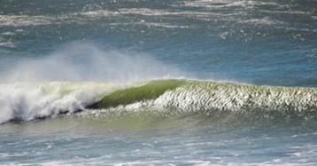 Die perfekte Welle reiten